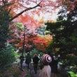大人さんぽ。東京の紅…