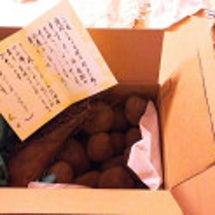 北海道から贈り物いた…