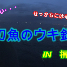 福浦で太刀魚狙ったら…