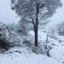 ◆冬到来◆