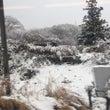 雪がすごい!