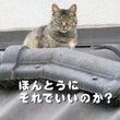 H29.11.23〜…