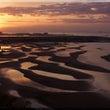 舞子浜の干潟