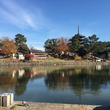 興福寺と猿沢池