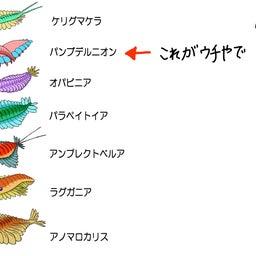 画像 パンブデ・ルリ子、シリウスパセット動物群を語る の記事より 5つ目