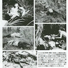 これが人間か? 【フォンニィ・フォンニャット虐殺】 <ベトナム戦争>韓国軍の民間婦女子大量虐殺の記事より