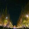 『外苑前銀杏並木ライトアップ〜❤️』^〜^♪の画像