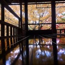 廊下に写る晩秋