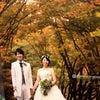教え子の結婚式への画像