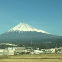 日本鍼灸師会 全国師…