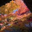 京都 東福寺から幸せ…