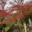 紅葉の奈良