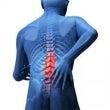腹部筋と腰