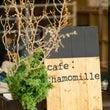 12月のcafe:c…