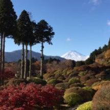箱根神社でご祈祷