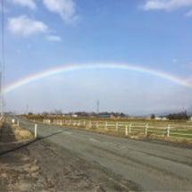 虹の端から端を見た!