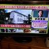 今、テレビで放映中の画像