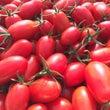 トマトコンシェルジュ…