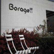 Borage  DI…