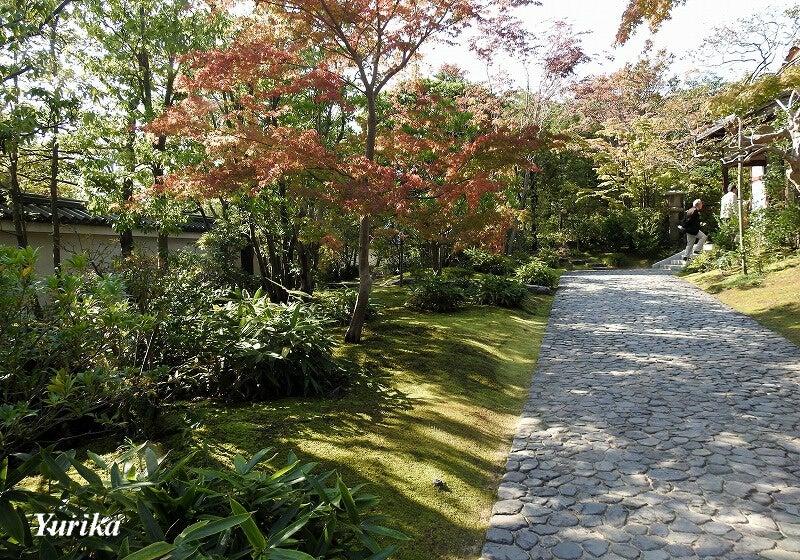 03御屋敷の庭