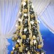 クリスマスツリー&お…