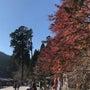 秋の比叡山延暦寺満喫…