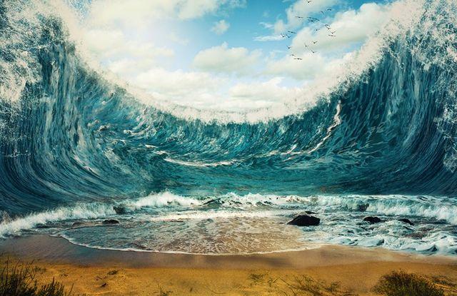 夢 津波 の