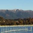 帰国後の寒〜い琵琶湖…