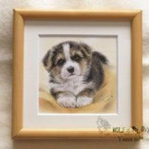 小さなペット肖像画<…