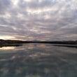 狭山湖と大人気のグロ…