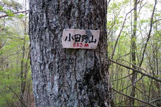 【写27】小田野城