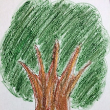 樹木画からのメッセー…