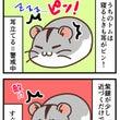 【ハム4コマ・4】耳…