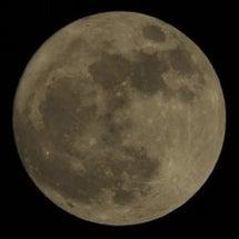 今宵も月が綺麗です