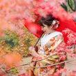 紅葉の和風庭園、ウェ…