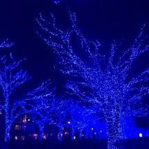冬の夜空と仕合わせる