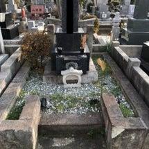 松戸八柱霊園でお墓の…