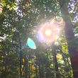 上郷の森を守る署名活…