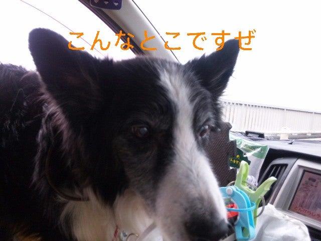 171204_120733_ed.jpg