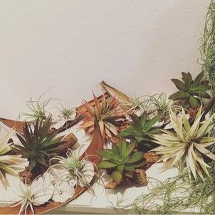 中目黒の美容室さんに飾るものをの画像