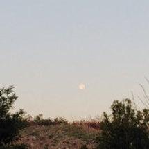月と桂❤️