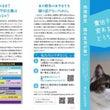 猫を利用した基地害政…
