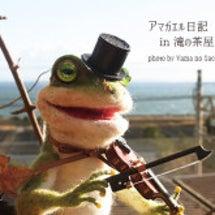 アマガエル日記 in…