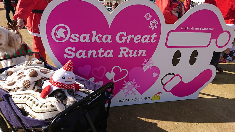 Osaka Great Santa Run 2017に参加してきました!