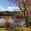 京都龍安寺からコンサ…