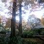 山県有朋の庭園が特別…