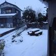 お気に入りの・・・冬…