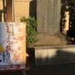 天祖神社 いちょう祭…