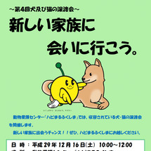 12月15日福島県動…