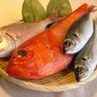 魚料理が劇的においし…